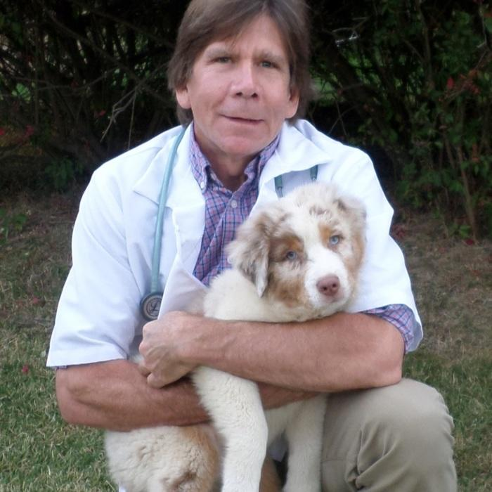 Dr. Jeff  Weagley<br>DVM photo